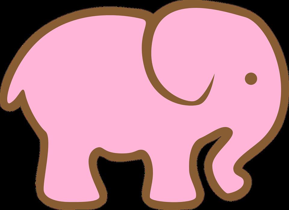 elephant-297205_960_720