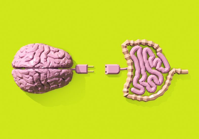 a-incrivel-conexao-cerebro-intestino